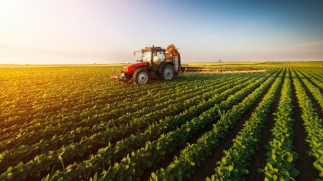 Jавни позив за подршку инвестицијама у пољопривредној производњи